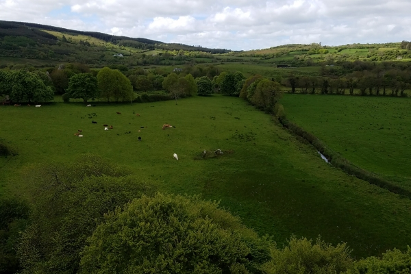View from the O'Dea Castle - 12 May 2018 (Photo supplied by Teri and Abraham Barton)