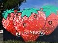 Beerenberg Family Farm